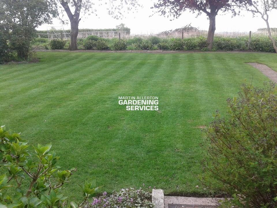 Great Bridgeford lawn striping