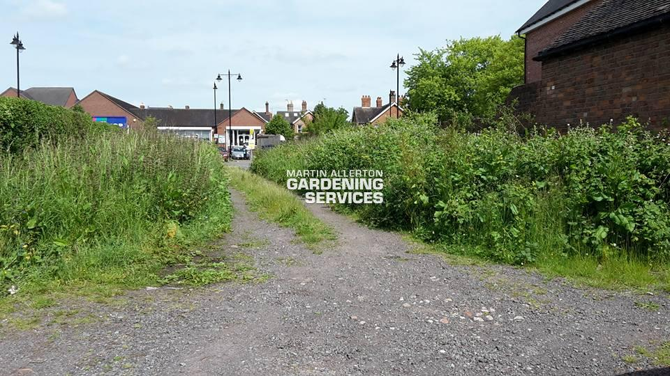 Market Drayton garden clearance - before