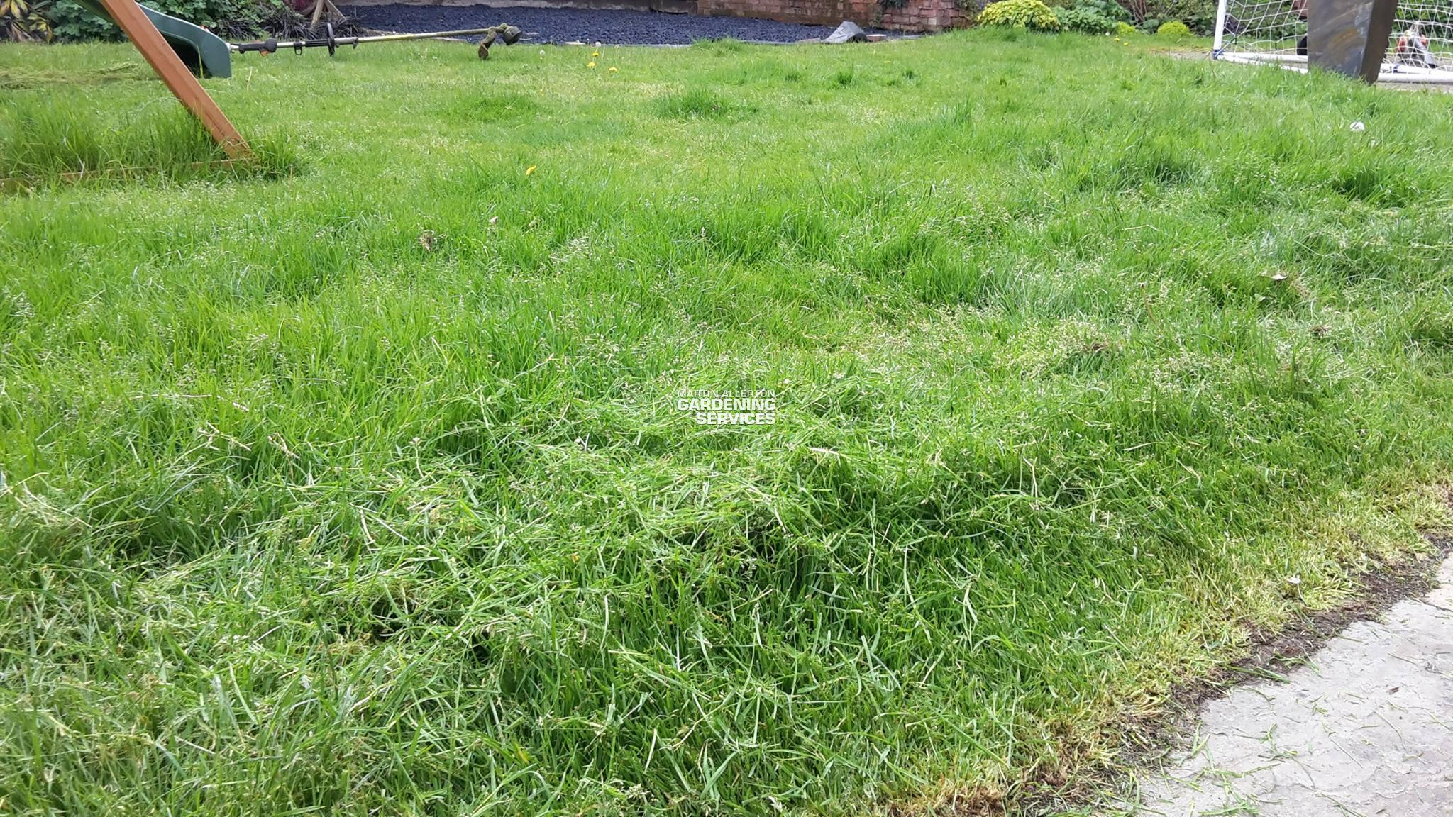 Hilderstone lawn mowing - before